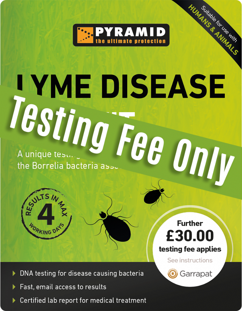 Lyme Disease Test Kit Testing Fee Only